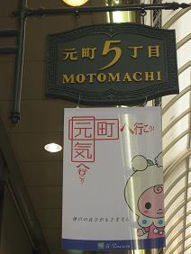 もとずきんちゃん.JPG